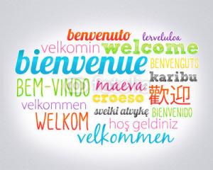 Des Mots et Des langues
